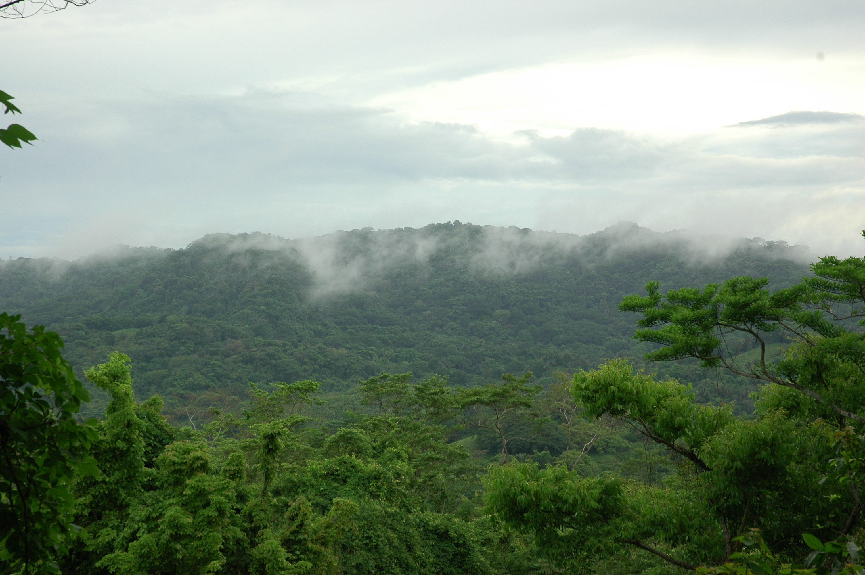 Cabo Blanco Nature Reserve-1st in Costa Rica