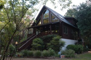 Edisto Island Treehouse Log Cabin