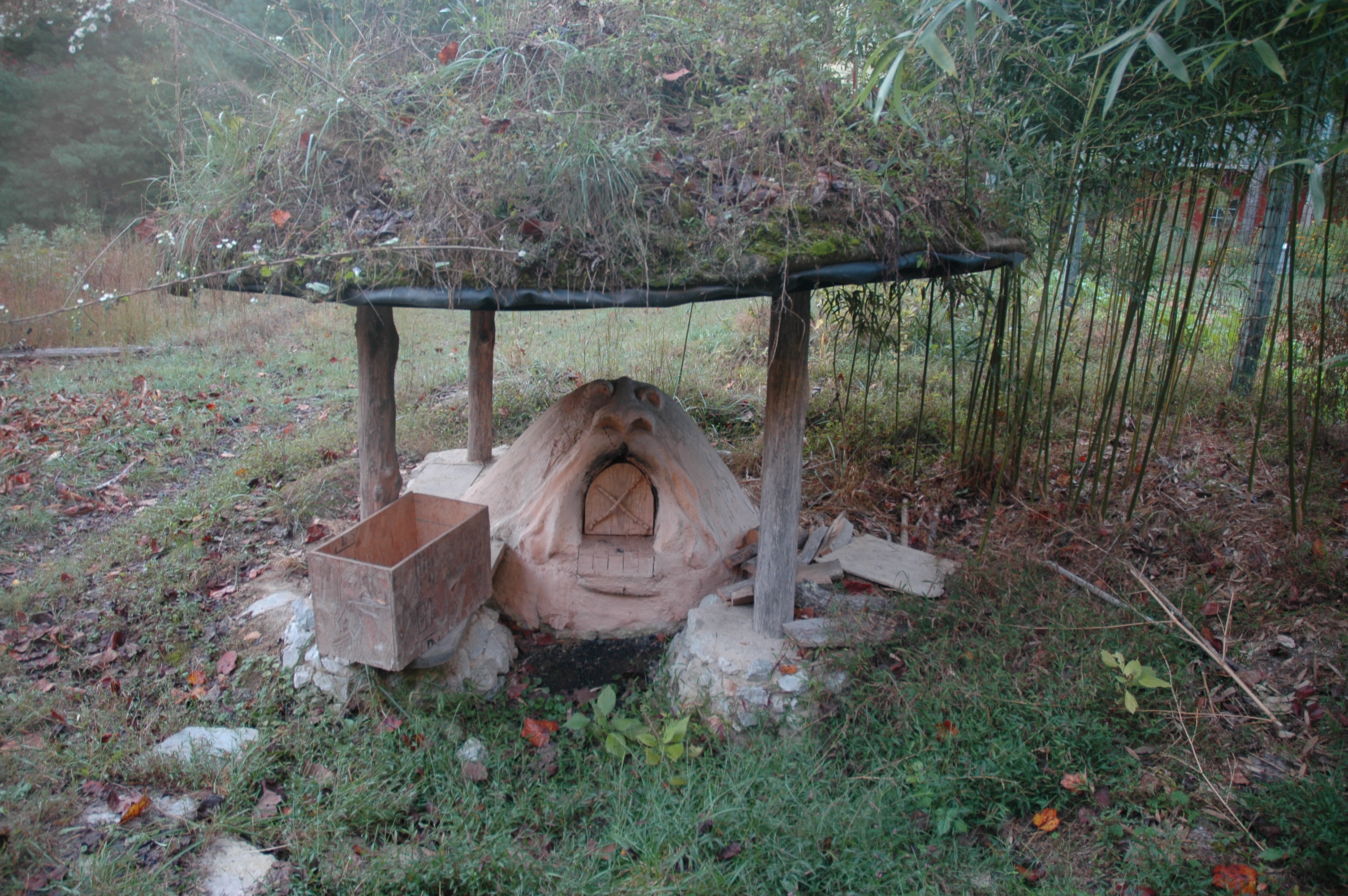 Cob Oven/Satellite Roof
