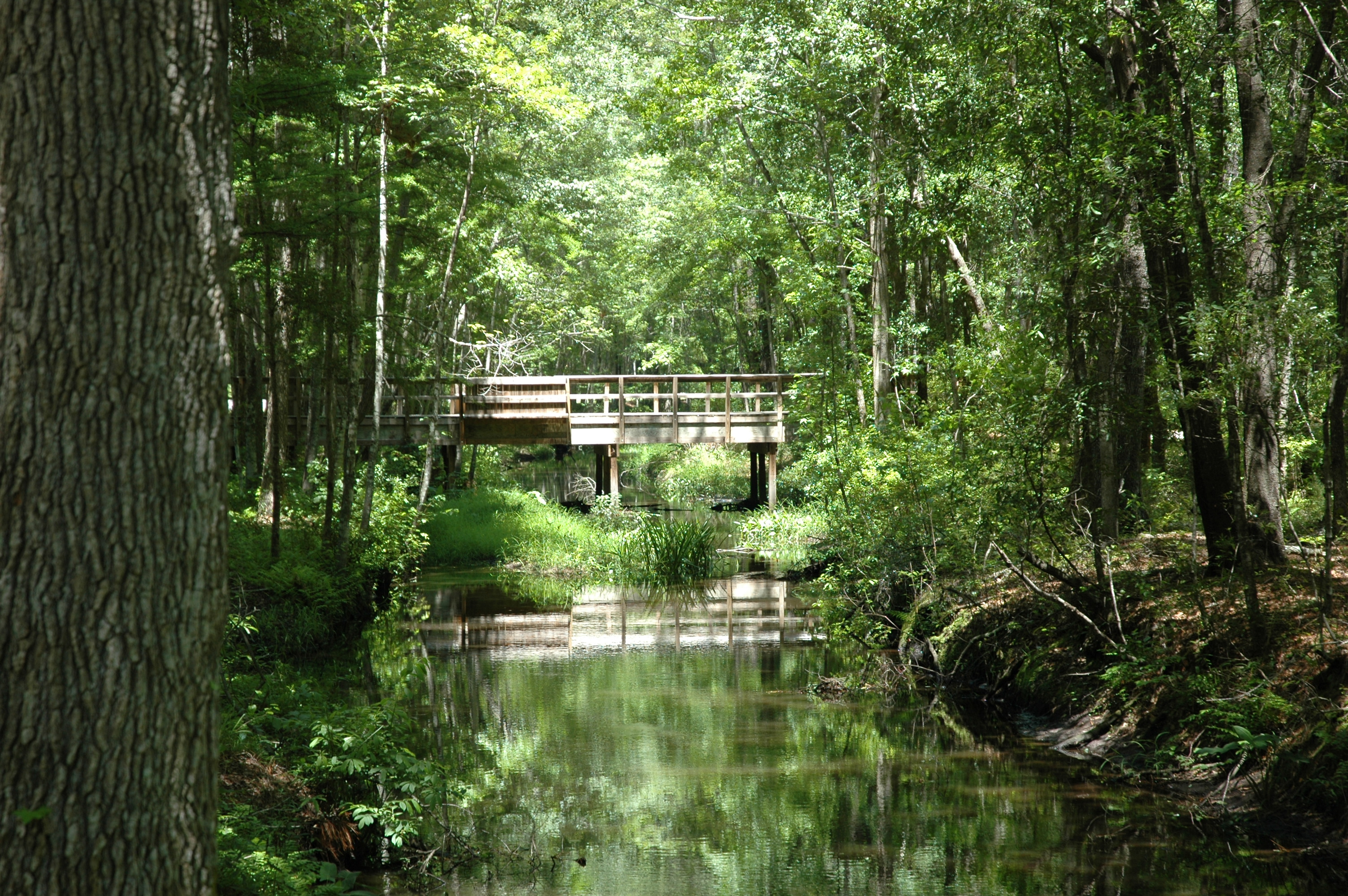 Walterboro Wildlife Sanctuary
